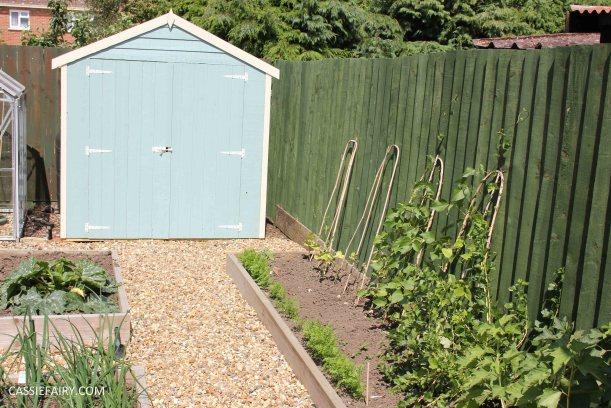 allotment summer garden veggie patch runner beans-2