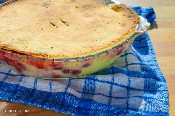 diy-recipe-baking-harvest-pie-cooking-apple-and-blackberry-pastry-dessert-pudding-7