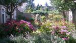 Little Gardens in The Hague