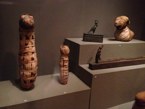 "animal mummies in the ""Ancient World"" section at the Museum of Fine Arts, 525 BC to 1st Century AD; 13 - dog mummy, 14 - kitten mummy, 18 - ram mummy, 19 - serpent coffin, to the left of the ram mummy is a falcon coffin"