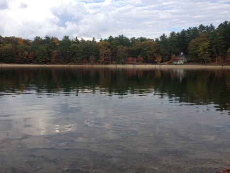 Beach at the Walden Pond State Reservation in Concord, MA (in the distance)