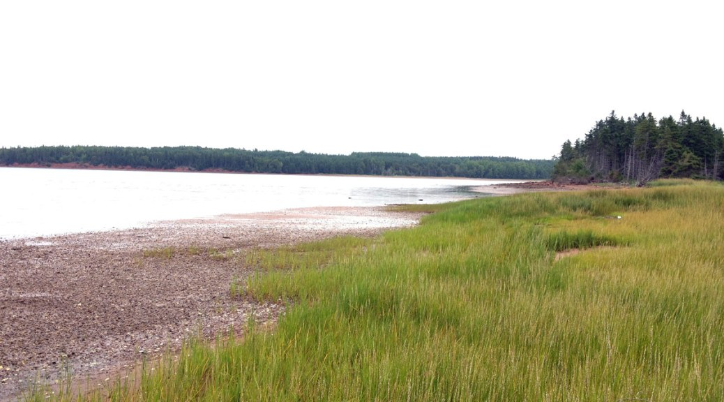 our private clamming beach at our vacation rental on Prince Edward Island