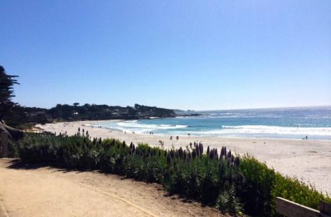 Carmel Scenic Road in Monterey Bay, California by Megan