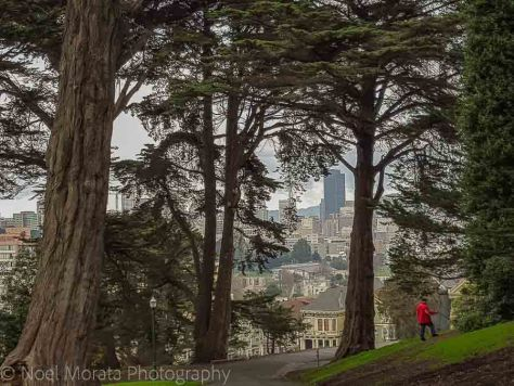 San Francisco by Noel from Travel Photo DIscovery