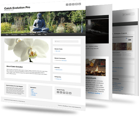 Buy Premium WordPress Themes
