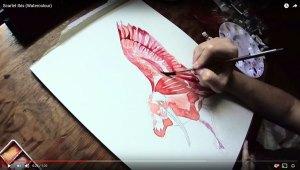 ibis_feature