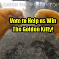 Vote for Cat Behavior Finally Explained to Win the Golden Kitty!