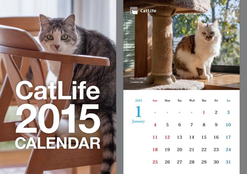 CatLife 猫写真カレンダー2015