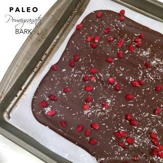 Dark Chocolate Pomegranate Bark (nut-free)
