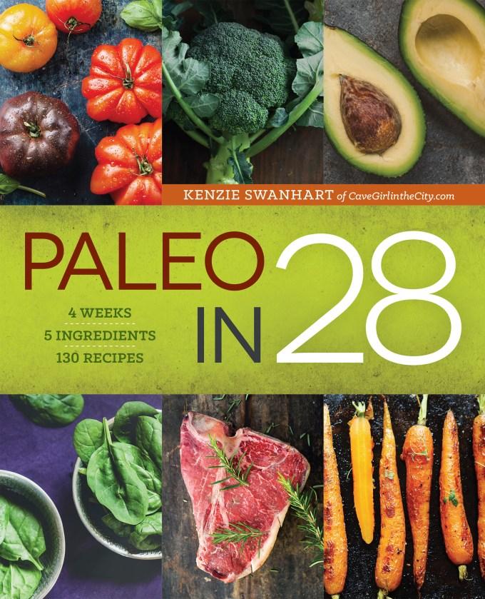 PaleoIn28_Cover