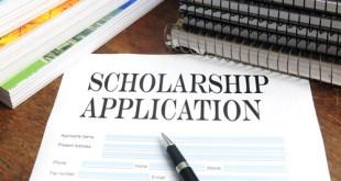 ICSI Merit cum Means Assistance Application Form