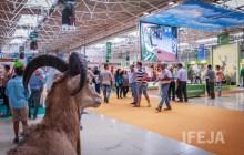Ibercaza se consolida como la más importante feria en Andalucía