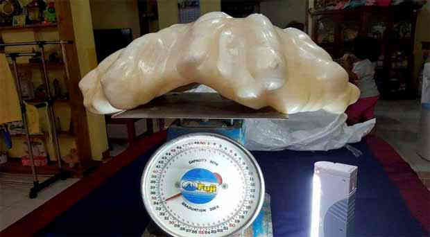 A 34-kilo pearl found off Palawan waters maybe worth $100-M