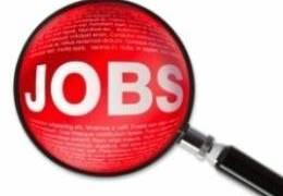 JobsDaily-4.jpg