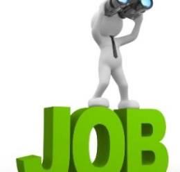 JobsDaily-5.jpg