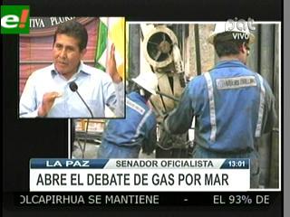 Senador pide no politizar propuesta de referendo para venta de gas a Chile