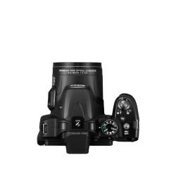 Small Crop Of Nikon Coolpix P520