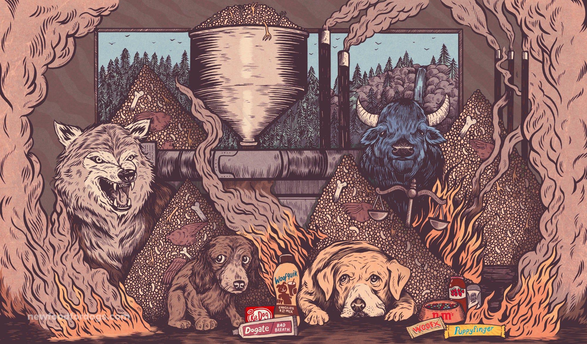 Fullsize Of Blue Buffalo Lawsuit