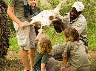 South Africa's Safari Secrets - Phinda Mountain Lodge