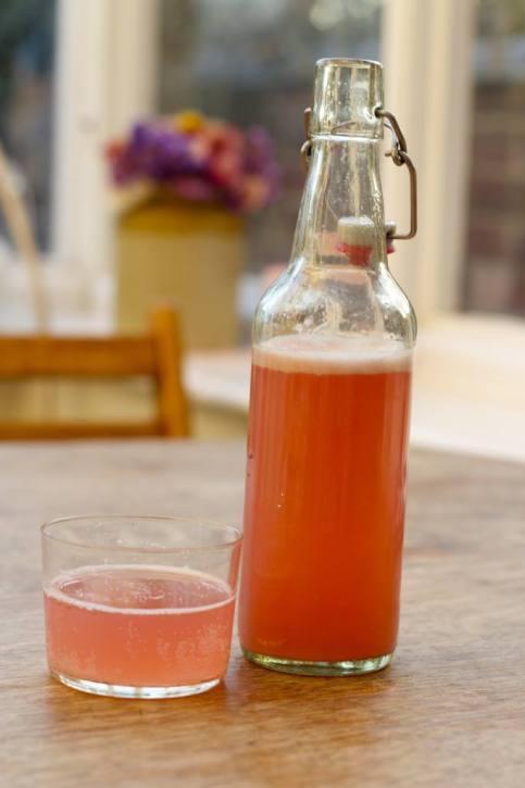 Rhubarb and Honey Soda