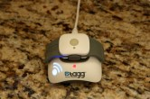Tagg Pet Tracker Review - Image 6 of 11