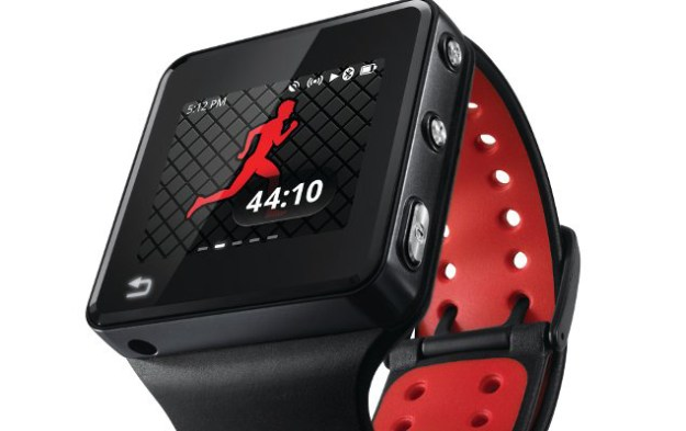 Fitness Watch Sales 2013