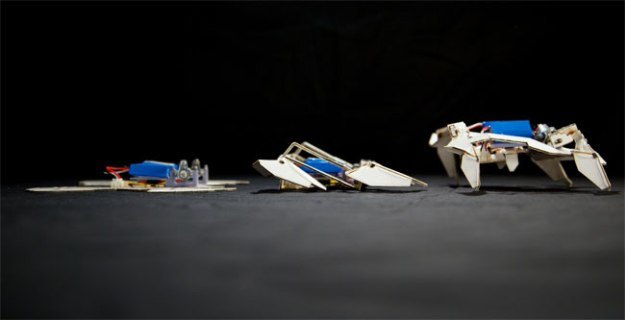 World's Coolest Robots Folding