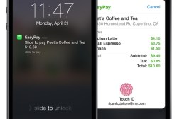 iPhone 6 and iWatch NFC Payments Security