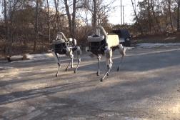 Best Google Robots Spot