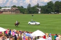 Tesla Vs Horse
