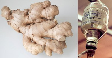 Резултат со слика за Study Shows Ginger Is 10,000x Stronger Than Chemo (Only Kills Cancer Cells)