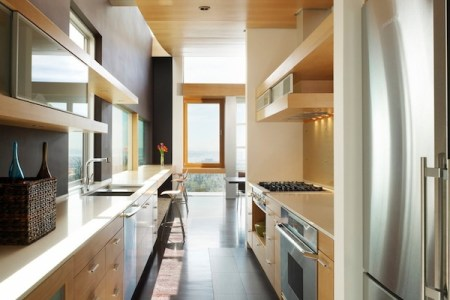 galley kitchenmodern wood