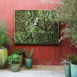Small Of Vertical Gardens Solutions
