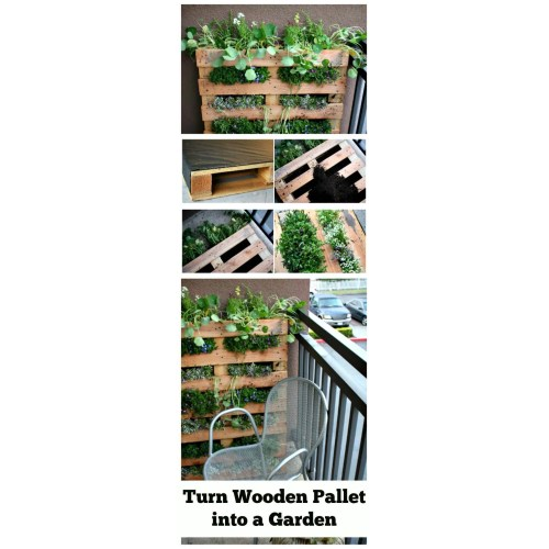 Medium Crop Of Horizontal Pallet Garden