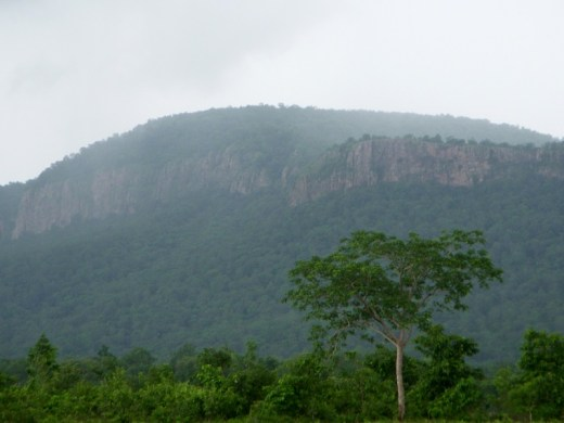 More than 90 per cent of Andhra's bauxite reserves are concentrated in the Eastern Ghats of Visakhapatnam (Image for representation; photo courtesy: Adityamadhav83/Wikipedia)