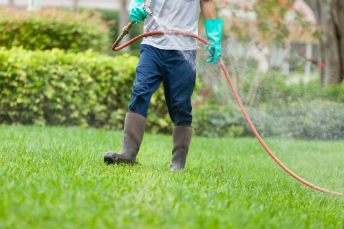 Medium Of Lawn Doctor Reviews