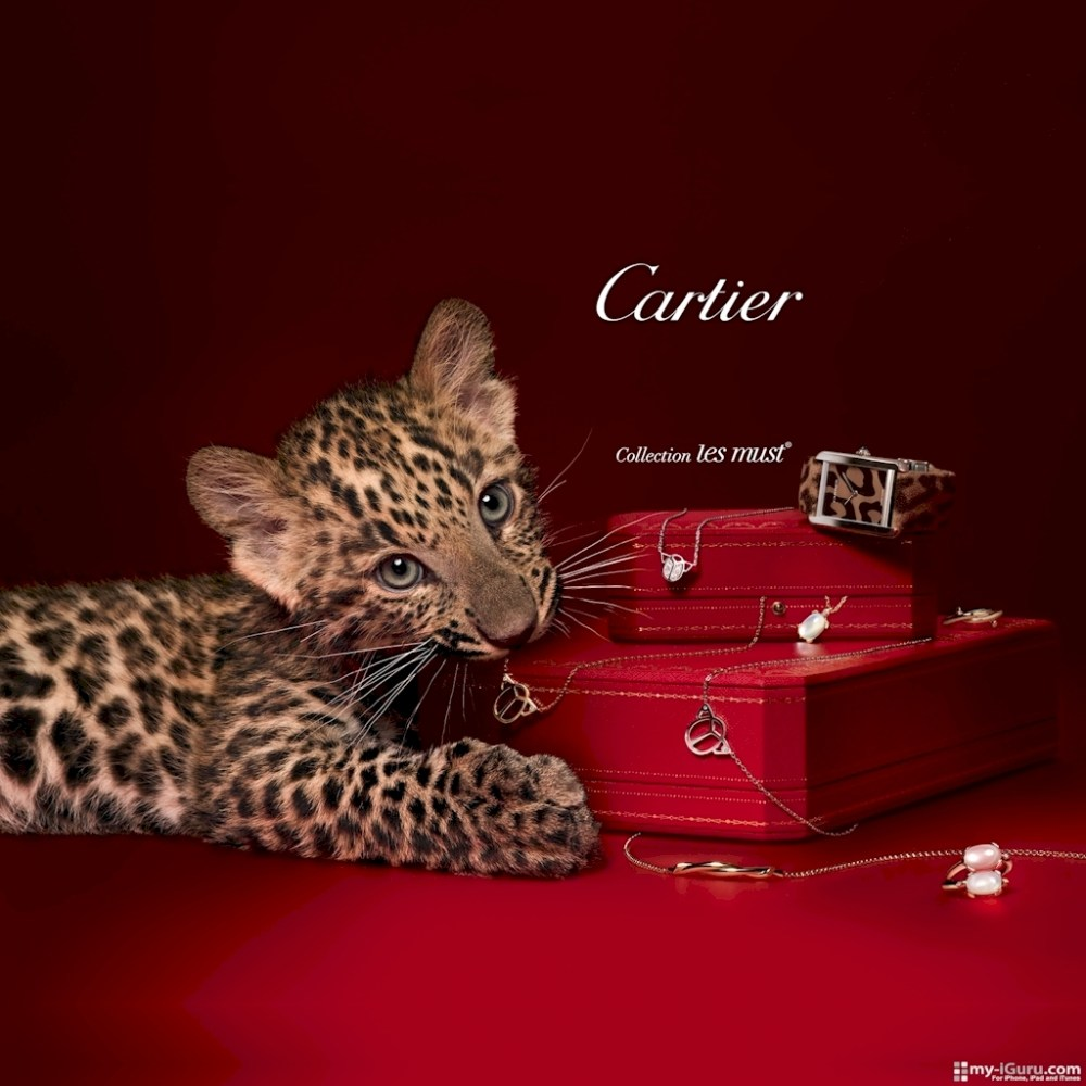 ipad wallpaper cartier Accueil