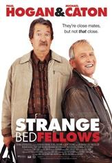 Poster do filme Estranha Amizade