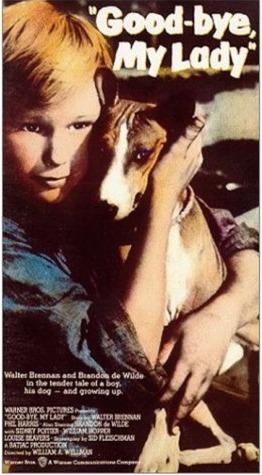 Poster do filme Cruel Dilema