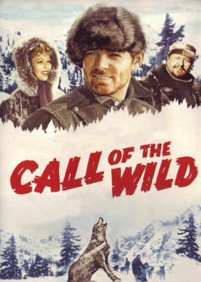 Poster do filme O Grito da Selva