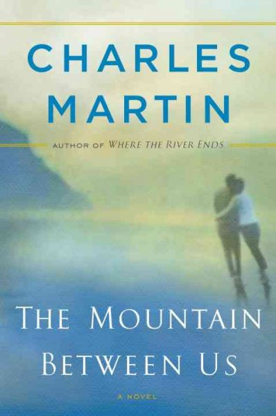 Poster do filme The Mountain Between Us