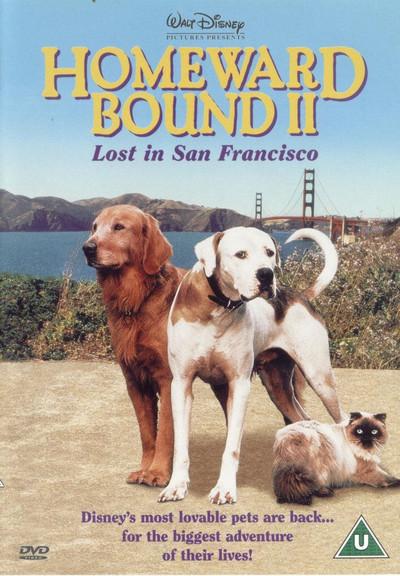 Poster do filme A Incrível Jornada II: Perdidos em São Francisco