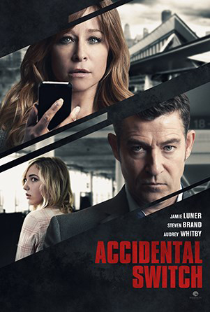 Poster do filme Accidental Switch