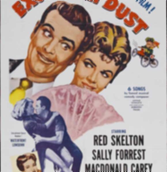 Poster do filme Desculpe a Poeira