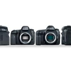 Small Crop Of Canon 6d Vs 5d Mark Ii