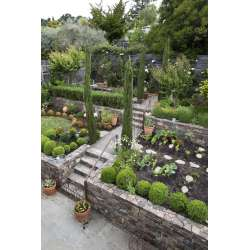 Small Crop Of Landscape Garden Design