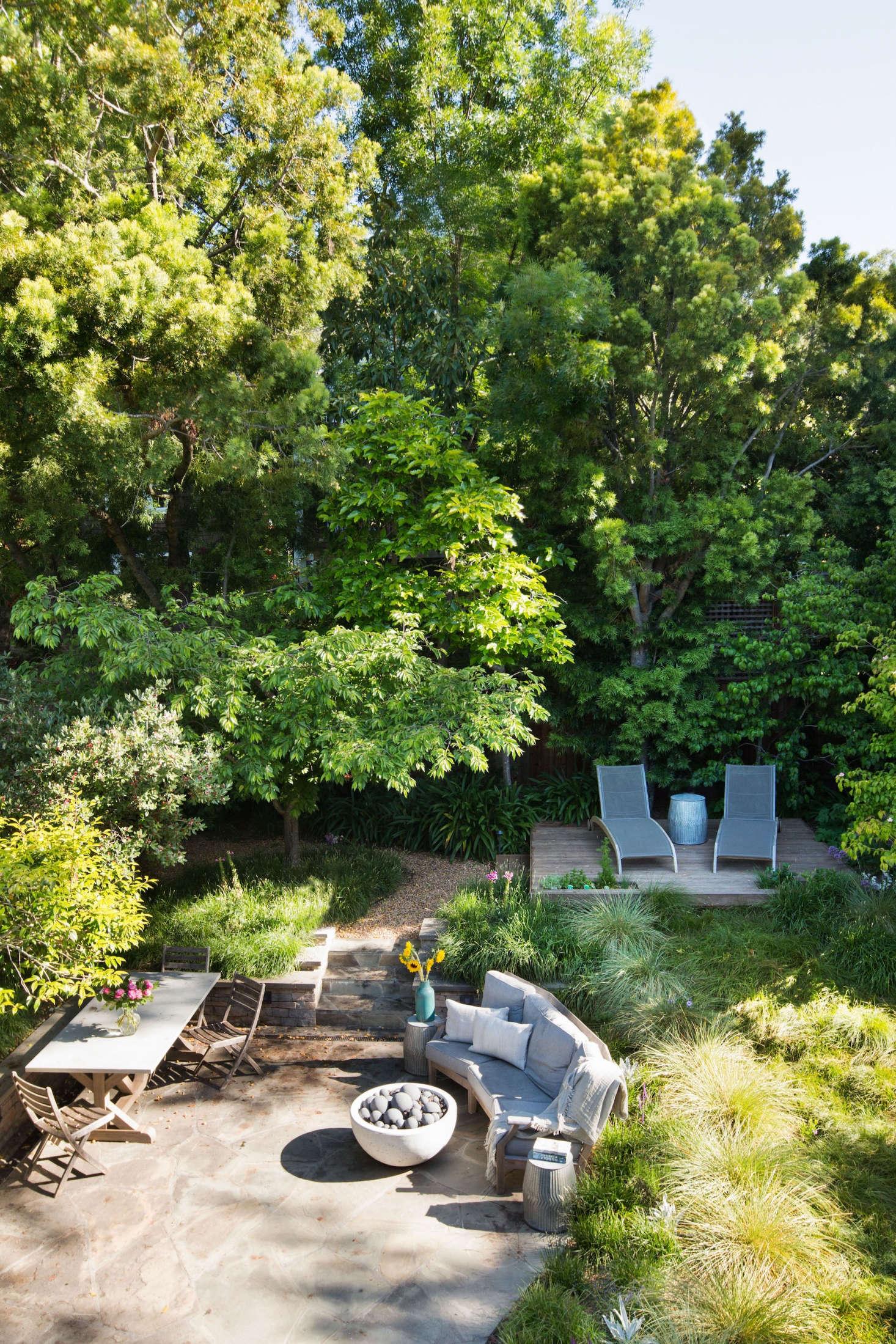 Fullsize Of In The Backyard