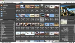 Small Of Best Duplicate Photo Finder