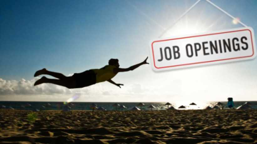 summer jobs everything you need to know hexjam