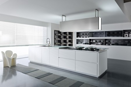 pedinusa kitchen with built in cabinetry